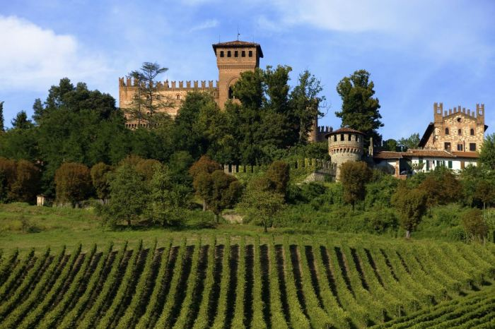 castello-gabiano-alessandria.jpg